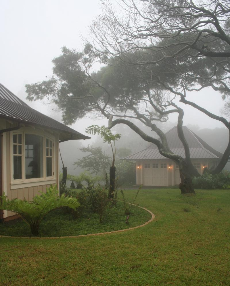 foggy day on Lanai